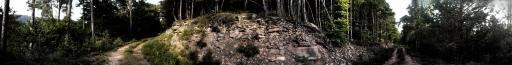 Lizard Point, Palatinate Forest